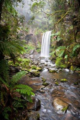Quadro Hopetoun Falls, uma cachoeira isolada no Otway Ranges, Austrália