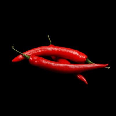 Quadro hot chili peppers vermelho