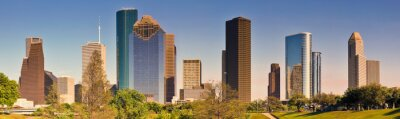 Quadro Houston Skyline