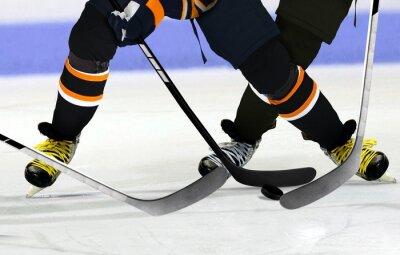 Quadro Ice Hockey players on rink