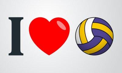Quadro Icono plano eu amo voleibol cor em fundo degradado