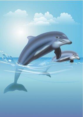 Quadro Ilustração de salto dos golfinhos