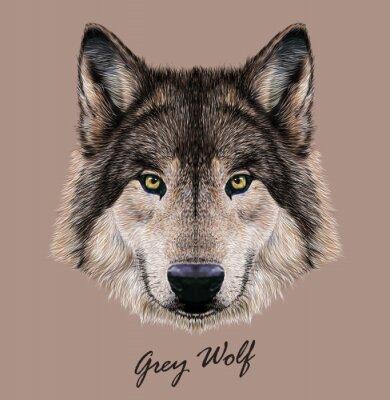 Quadro Ilustração de vetor digital Retrato de um lobo.