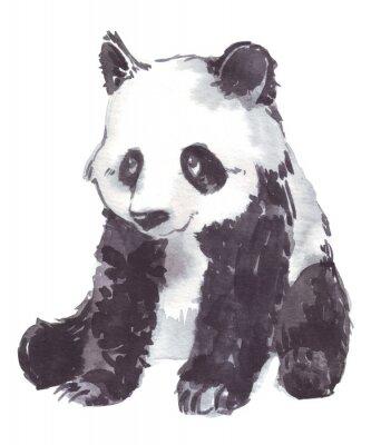 Quadro Ilustração, desenho, panda