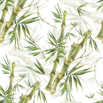 Quadro Ilustração em aquarela de folhas de bambu, sem costura padrão no fundo branco