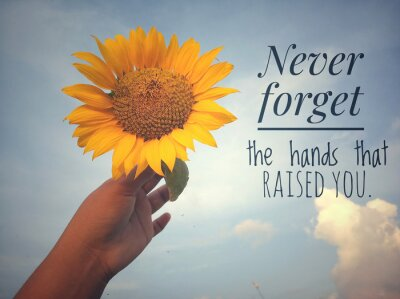 Quadro Inspirational motivational quote - Never forget the hands that raised you. With background of blue sky and beautiful sunflower blossom in hand. Photo concept with nature.