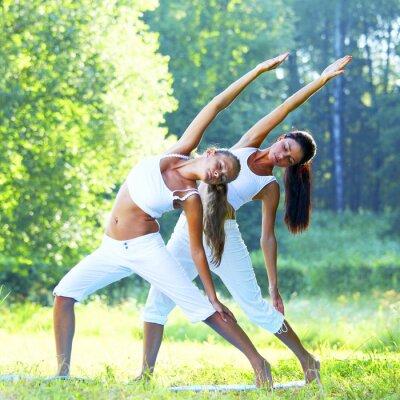Quadro ioga