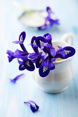 Quadro Iris flores roxas em um copo do vintage