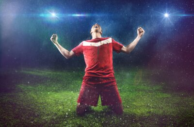 Quadro Jogador de futebol vitorioso