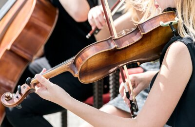 Quadro Jovem, mulher, tocando, violino