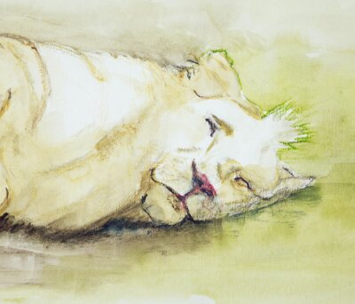 Quadro Leão do sono. A técnica dabbing perto das bordas dá um efeito de foco suave devido à rugosidade da superfície alterada do papel.