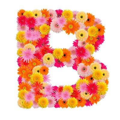 Quadro Letra B alfabeto com gerbera isolado no fundo branco
