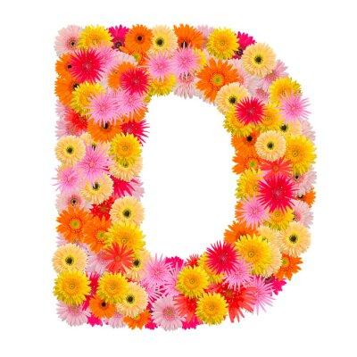 Quadro Letra D alfabeto com gerbera isolado no fundo branco