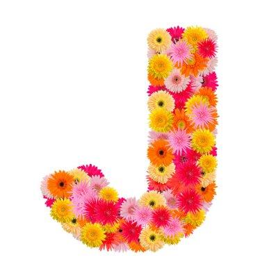 Quadro Letra J alfabeto com gerbera isolado no fundo branco