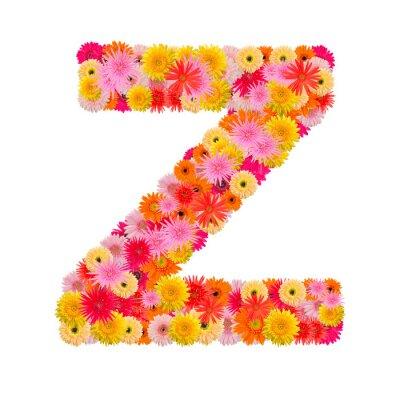 Quadro Letra Z alfabeto com gerbera isolado no fundo branco