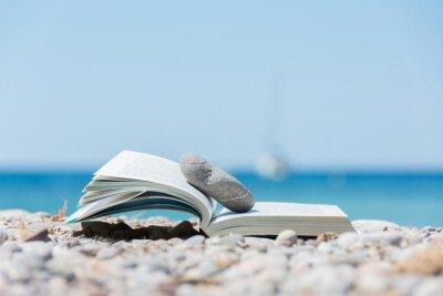 Quadro Livro na praia