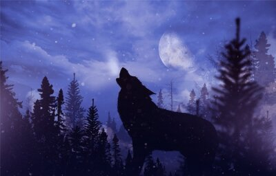 Quadro Lobo do urro na região selvagem