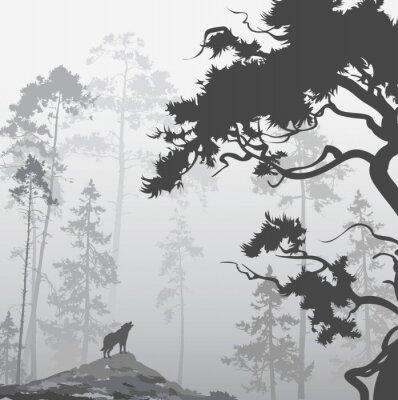 Quadro Lobo na floresta