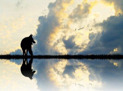 Quadro Lobo no rio ao pôr do sol