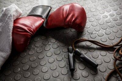 Quadro Luvas de boxe e corda