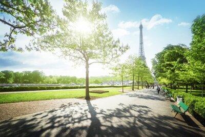 Quadro Manhã ensolarada e Torre Eiffel, Paris, França