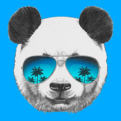 Quadro Mão retrato de Panda desenhada com óculos de sol espelho. Vetor elementos isolados