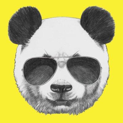Quadro Mão retrato de Panda desenhada com óculos de sol. Vetor isolado elementos.