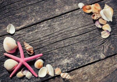 Quadro Mar, conchas, madeira, fundo