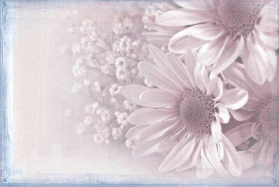 Quadro Margarida, ramalhete, pastel, cor-de-rosa, textura, sobreposição, azul, Quadro
