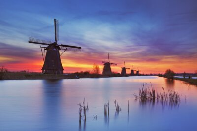 Quadro Moinhos de vento tradicionais no nascer do sol, Kinderdijk, os Países Baixos