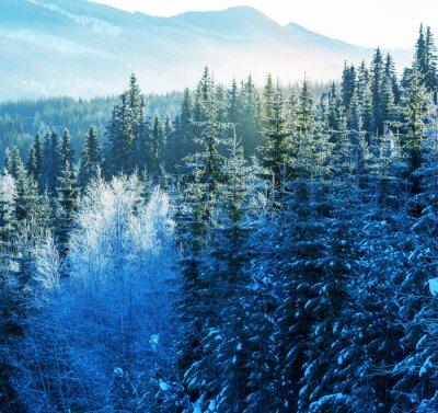 Quadro Montanhas de inverno