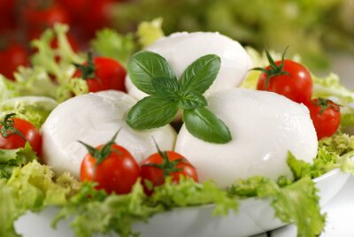 Quadro mozzarella di bufala italiana con pomodorini di pachino