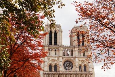 Quadro Notre Dame, Paris