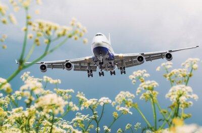 Quadro O avião comercial de passageiros voa sobre campos de flores no aeroporto.