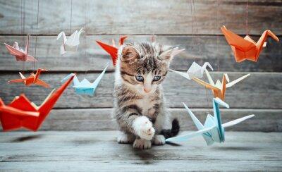 Quadro O gatinho está jogando com guindastes de papel