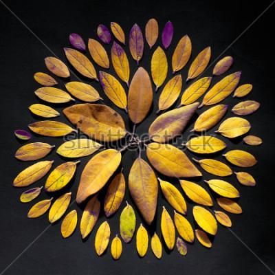Quadro O plano feito a mão da mandala da folha está no fundo preto. Arranjo de mandala boêmio feito de folhas.