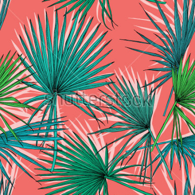 Quadro O teste padrão sem alteração com imagem de uma palma do fã verde está em um fundo de coral. Ilustração vetorial