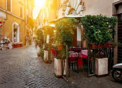 Quadro Old street in Trastevere in Rome, Italy