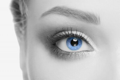 Quadro Olho humano