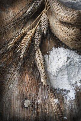 Quadro Orelhas do trigo