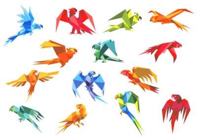 Quadro Origami paper models of parrots