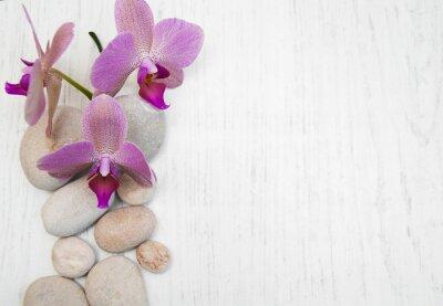 Quadro Orquídeas e pedras de massagem