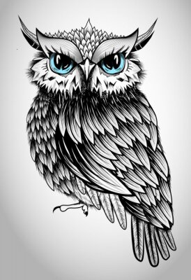 Quadro Owl Lady - beautiful vector illustration