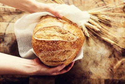 Quadro Padeiro, segurando, pão, pão, rústico, bacgkround