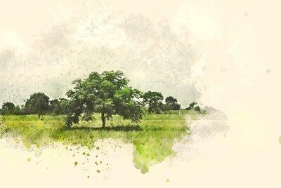 Quadro Paisagem abstrata da árvore e do campo no fundo da pintura da ilustração da aguarela.