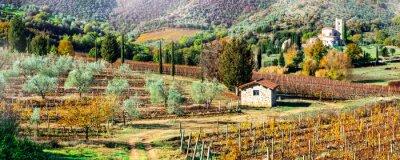 Quadro Paisagens mágicas do outono no campo de Toscânia. Região vinha da Itália