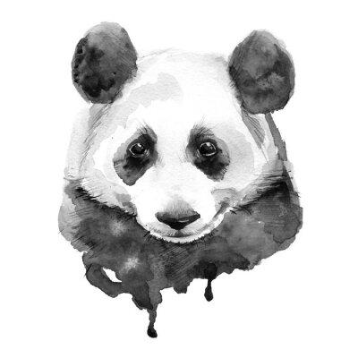 Quadro Panda. Preto e branco. Isolado