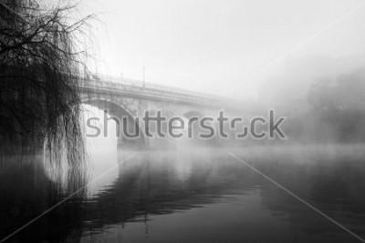 Quadro Parte histórica de Barcelos em uma manhã de nevoeiro (foto HDR preto e branco)