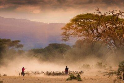 Quadro Pastores Masai com o rebanho e cabras