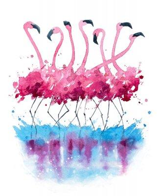 Quadro Pintura da aguarela dos flamingos